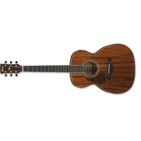 Ibanez Ibanez AC Artwood 6Str Acoustic Guitar - Left Handed - Open Pore Natural
