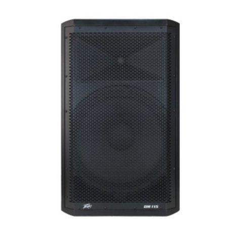 Peavey DM 115 2-Way Powered Speaker - Demo