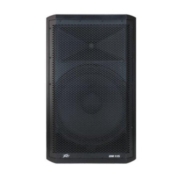 Peavey Peavey DM 115 2-Way Powered Speaker - Demo