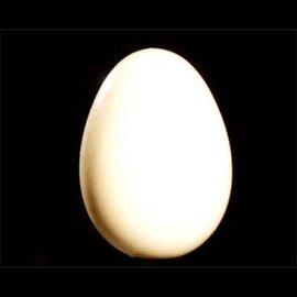 India Wooden Egg - India