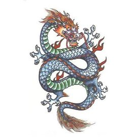 Johnson And Mayer Fantasy Dragon Temporary Tattoos