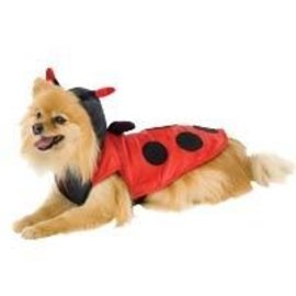 Leg Avenue Lady Bug - Leg Avenue - Pet Costume MD