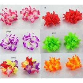 fun express china Hawaii Bracelets (C12)