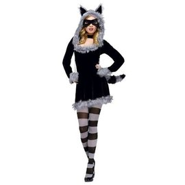Fun World Racy Raccoon Sml/Med 2-8