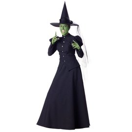 InCharacter Wicked Witch - Adult Medium 8-10