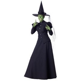 InCharacter Wicked Witch extra Large