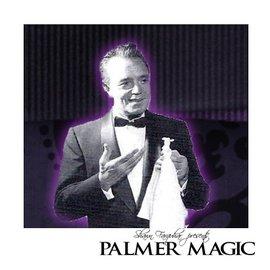 "Palmer Magic Silk - Slydini Silks 24"" by Palmer Magic (M10)"