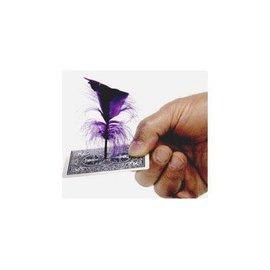 Royal Magic Spirit Feather - Royal Magic (M10)