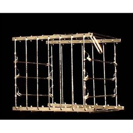 India Vanishing Bird Cage - India