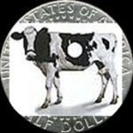 Daytona Magic Holey Cow by Daytona Magic