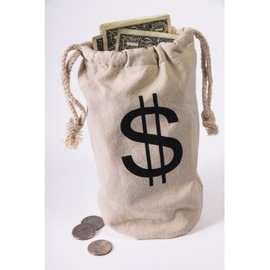 Forum Novelties Money Bag