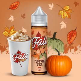 Vibleo Pumpkin Spice 0mg 60ml by Fall E-Liquids