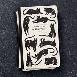 Compendium Write Now Journal - No Ordinary Cats