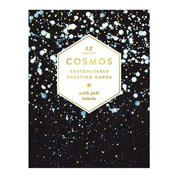 Cosmos diy greeting card set portage bay goods chronicle books cosmos diy greeting card set m4hsunfo