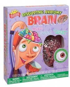 ALEX:  Disgusting Anatomy Brain