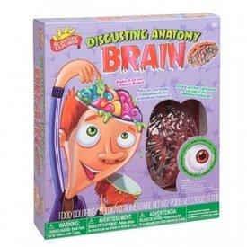 ALEX:  Disgusting Anatomy Brain