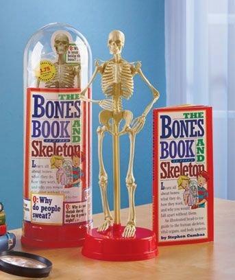 BONES BOOK AND SKELETON