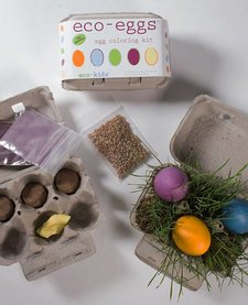 ECO-KIDS: ECO-EGGS COLORING AND GRASS GROWING KIT