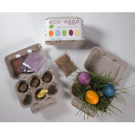 ECO-KIDS ECO-KIDS: ECO-EGGS COLORING AND GRASS GROWING KIT