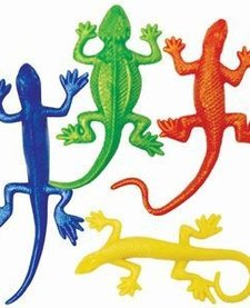 PLAYVISIONS:  REPTILES STRETCH TO GO
