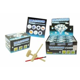 Diamond Fossil Dig Kit