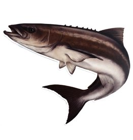 Cobia Reel Fish Decal Sticker