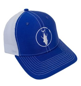 Descent Descent Icon Royal/White Curved Hat