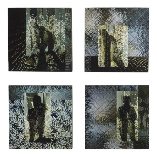 Pattiy Torno, Enduring, Fotopiecing Set of 4, digital archival pigment inkjet fotoprints, wood, lacquer, 31 x 31""