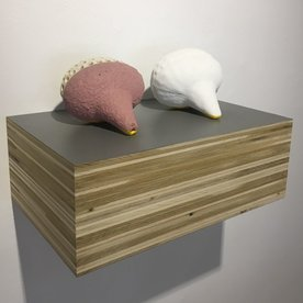 In-Cahoots Matt Mitros, Bio RAD #8, ceramic, 3D powder printed plastic, wood