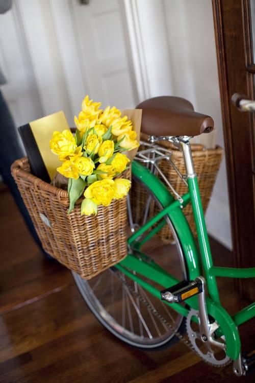 Cisco - Pannier Bike Basket w/hooks