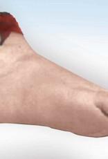 Body Part Foot