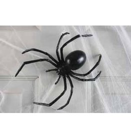 "6"" Black Widow Spider"