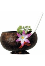Coconut Cup 10oz