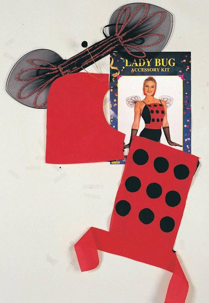 Create A Costume Ladybug