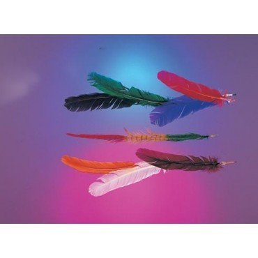 Feathers Turkey Quills Assorted