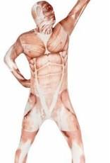Adult Costume Morphsuit Muscle Medium