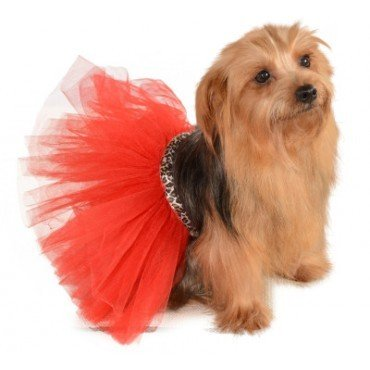 Dog Costume Tutu Red Leopard