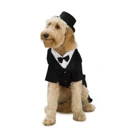 Dog Costume Dapper Dog Large