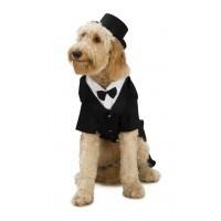 Dog Costume Dapper Dog Small