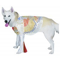 Dog Costume Elvis Medium