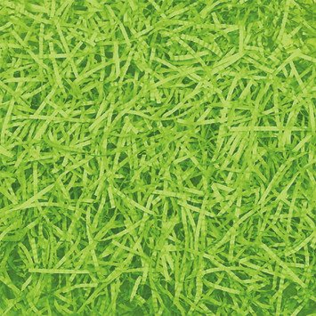 Easter Grass  Kiwi