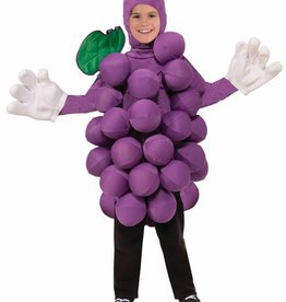 Child Costume Grapes One Size