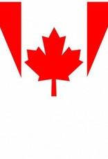 Canadian Flag Pennant Banner