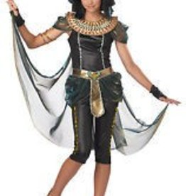 Teen Costume Dark Egyptian Princess Large