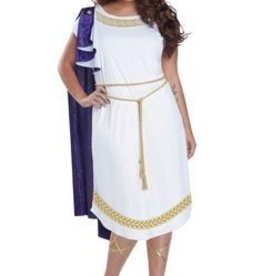 Women's Costume Grecian Toga Dress
