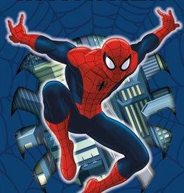 Spiderman Invitations 8pk