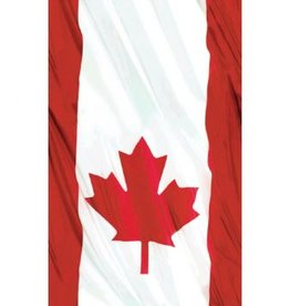 Waving Flag Plastic Table Cover