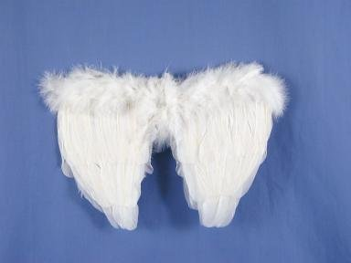 Feather Wings White