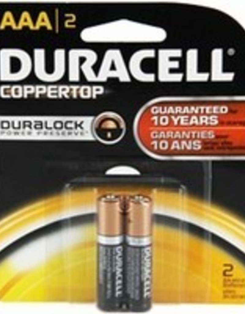 AAA Batteries- 2 pack