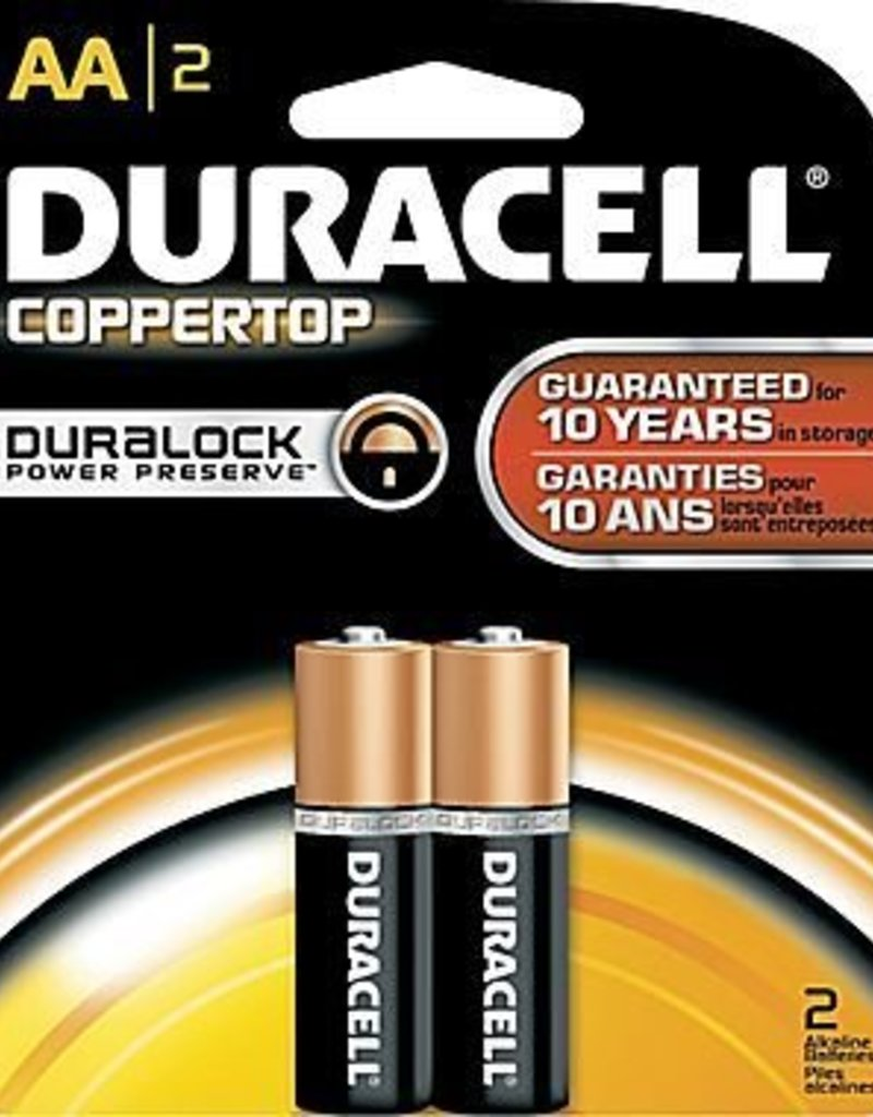 AA Batteries- 2 pack